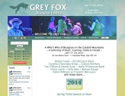 Grey-Fox-New