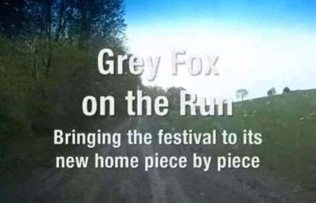 moving-grey-fox-video