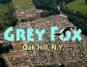The Grey Fox Experience